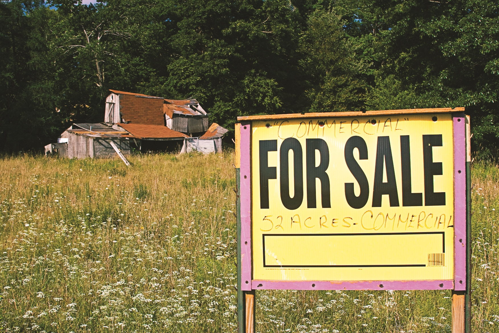Due Diligence for Foreign Investors in Rural Assets